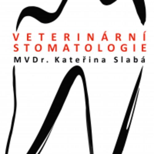 Veterinární stomatologie